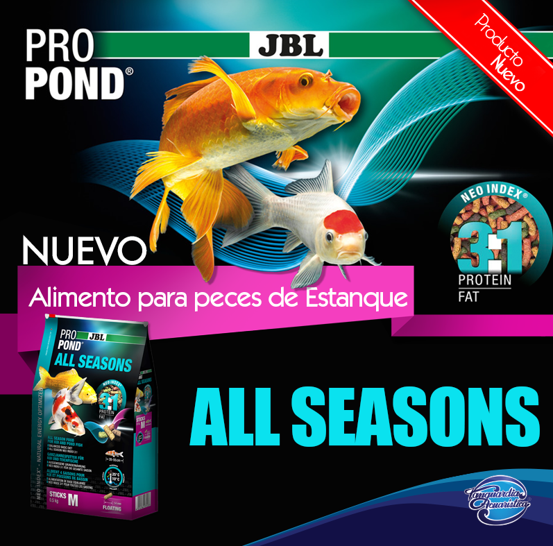 Alimento para peces churro pro pond all season for Comida de peces